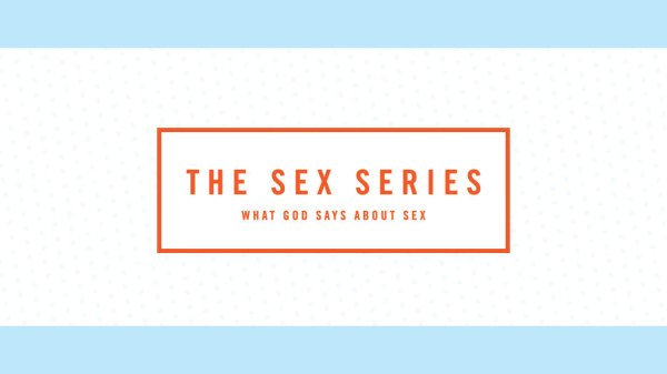 The Sex Series in Jr. High